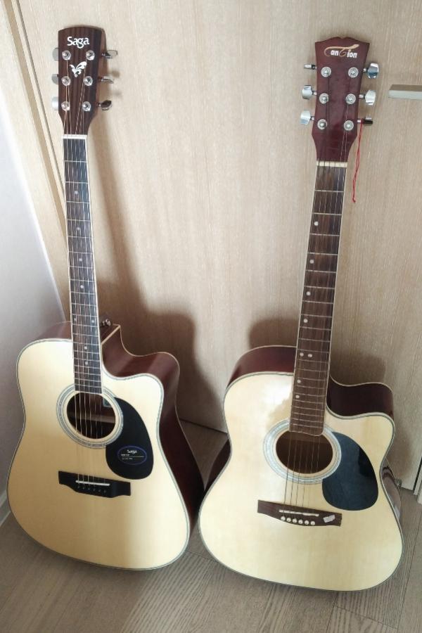 血统吉他V.S.杂鱼吉他